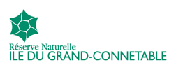 logo rn grand connetable